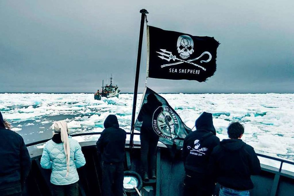 "Die Sea Shepherds auf Verfolgungsjagd in ""Chasing the Thunder"" (Foto: Simon Ager)"